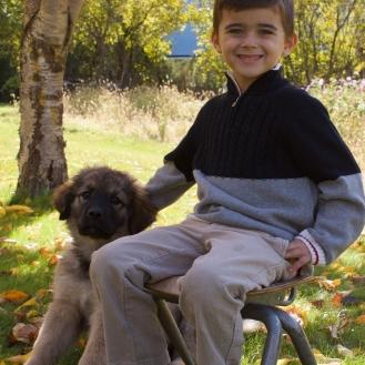 Nico and his pup Bindi Oct 2017