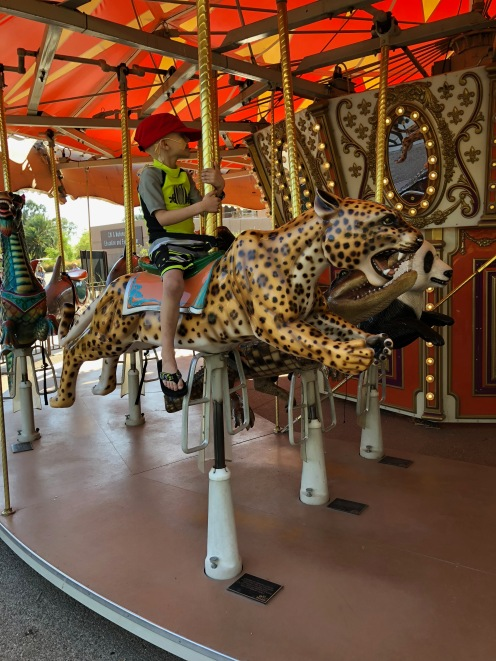 Carousel ride to end an afternoon at the zoo.