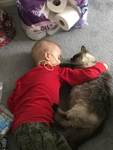 Sneaking in a power nap with our cat Meeka.